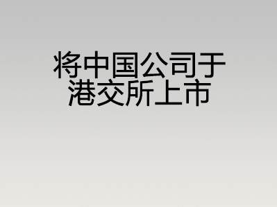 将中国公司于港交所上市
